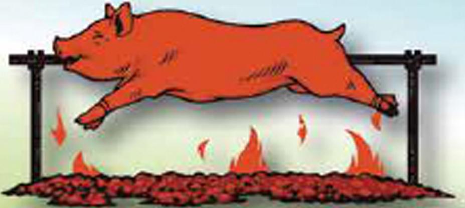 Le Cochon-Bernache